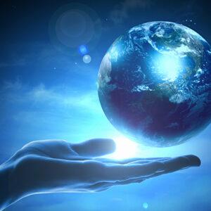 Sanctuary for Evolutionary Vision